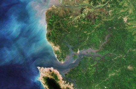 Sierra Leone River Estuary node full image 2
